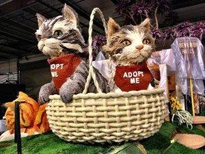 rose-parade-float-adopt-a-pet-1