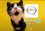 April 2016 is ASPCA's Prevention of Cruelty to Animals Month