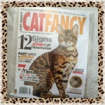 Collectible Edition Cat Fancy Magazine February 2014 ~ 12 Signs of a Good Cat Veterinarian (Bengal Cat & Kurilian Bobtail)