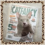 Collectible Edition Cat Fancy Magazine March 2014 ~ Home Issue, 5 Ways To Enrich Your Cat's Life (Russian Blue & Turkish Van)