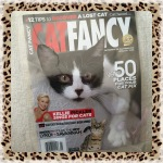 Collectible Edition Cat Fancy Magazine January 2015 ~ Visit 50 Places For Your Cat Fix (The New Lykoi & Savannah)