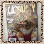 Collectible Edition Cat Fancy Magazine September 2014 ~ What To Feed Cats As They Age (Maine Coon & Chantilly)