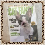 Cat Fancy Magazine March 2009 ~ Home Issue, 49 Cleaning Secrets (Cornish Rex & American Wirehair)